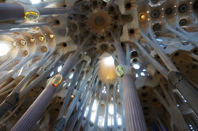 The ceiling of La Sagrada Familia